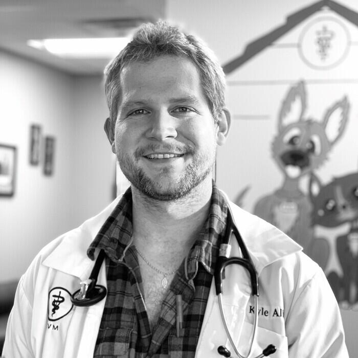 Dr. Kyle Albin, DVM  photo